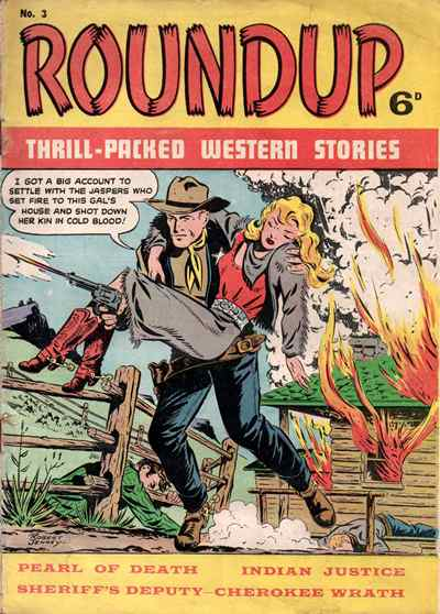 Roundup 03 UK cover